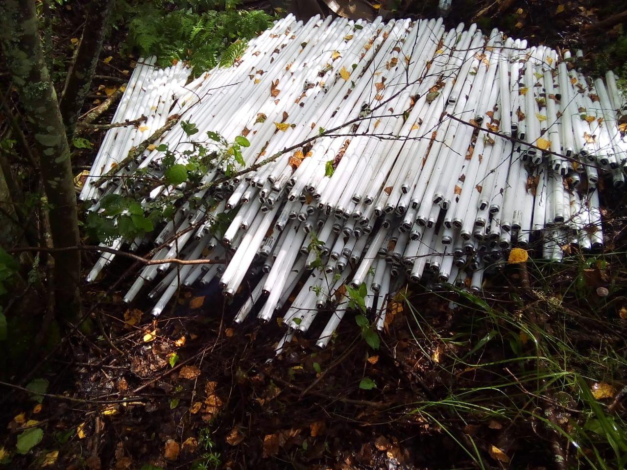 В Ярославской области ликвидировали несанкционированную свалку ртутных ламп