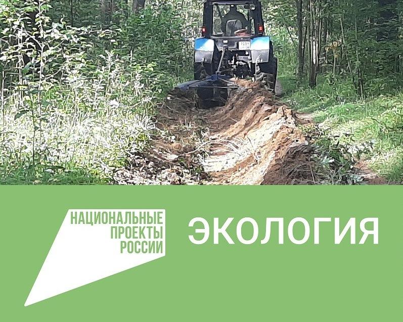 700 километров минерализованных полос создали в регионе для обеспечения пожарной безопасности лесов