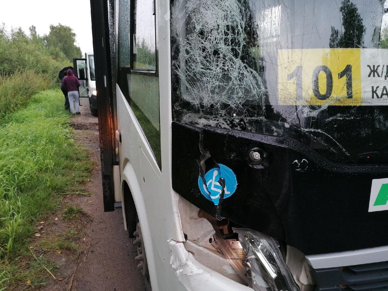 В Рыбинске водитель автобуса насмерть сбил велосипедиста