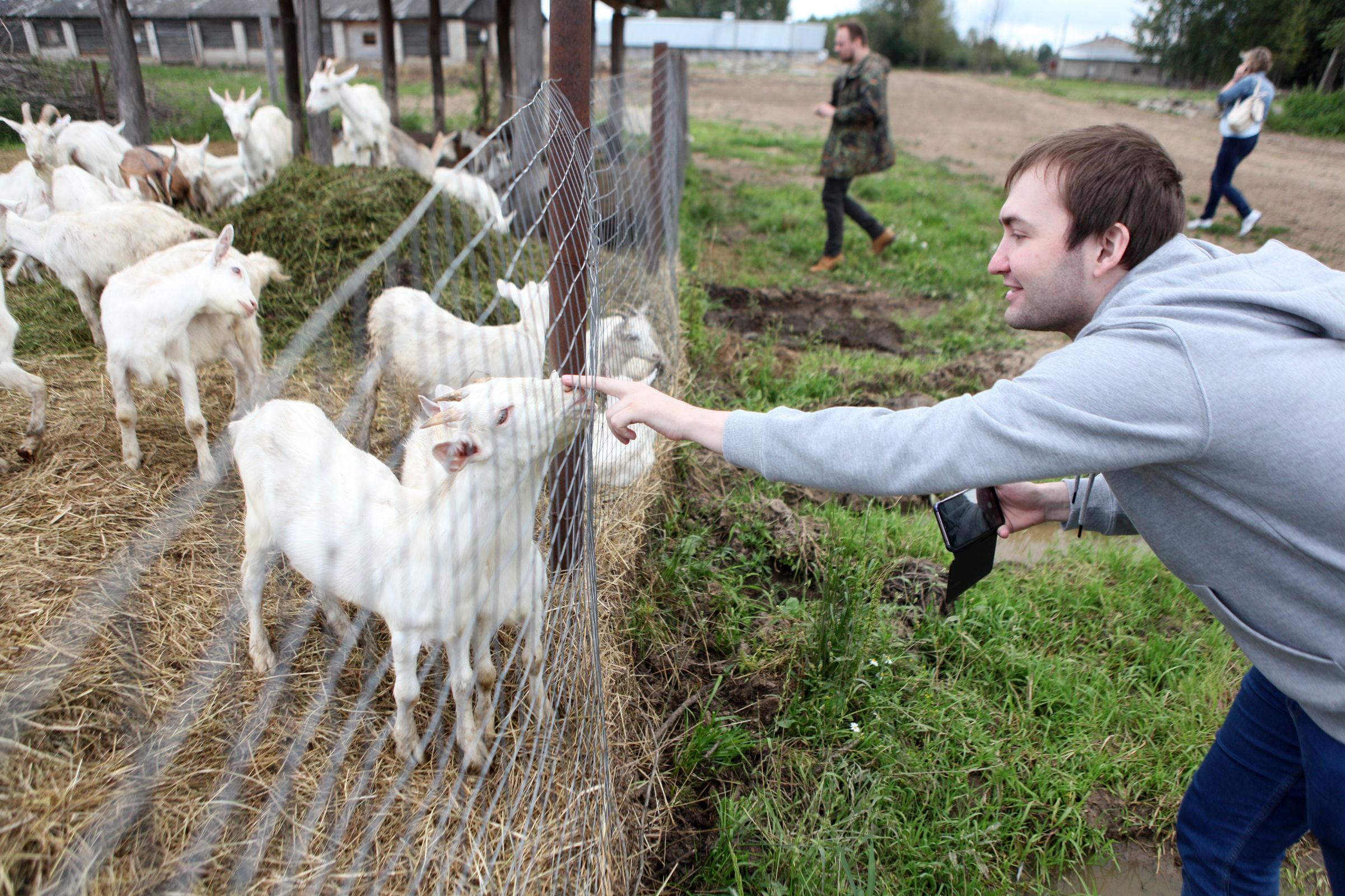 Ярославский программист рассказал, почему решил стать фермером