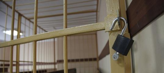 В Ярославле посадили в изолятор сбежавшего из-под домашнего ареста подозреваемого в развратных действиях