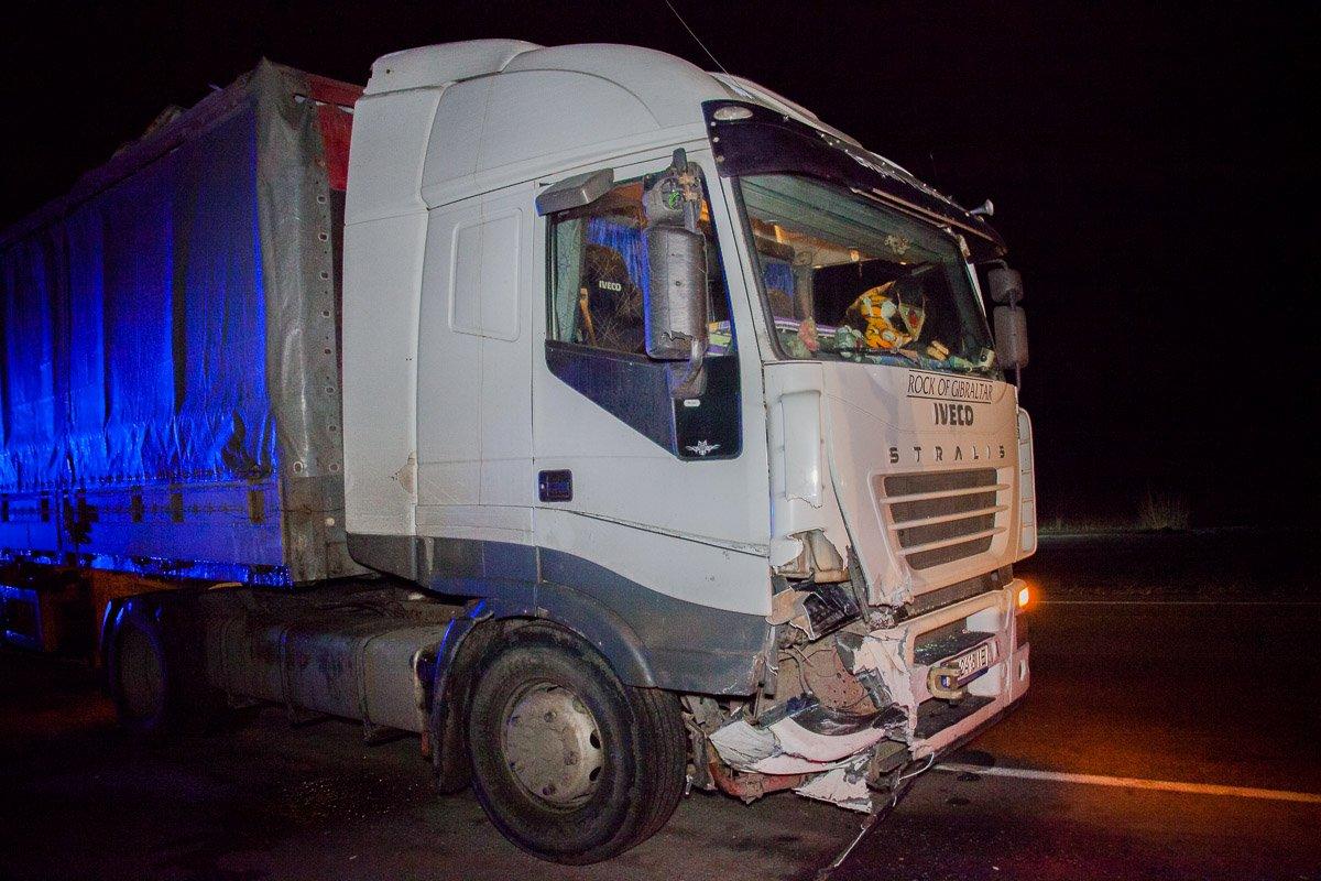 На трассе М8 в Ярославской области фура сбила стадо кабанов