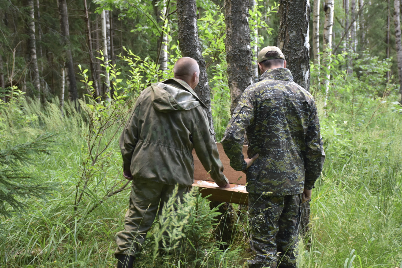 14 нарушителей из Ярославской области лишили права заниматься охотой по решению суда