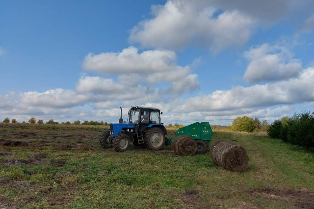 Лен убрали на более чем 80 процентах посевных площадей в Ярославской области