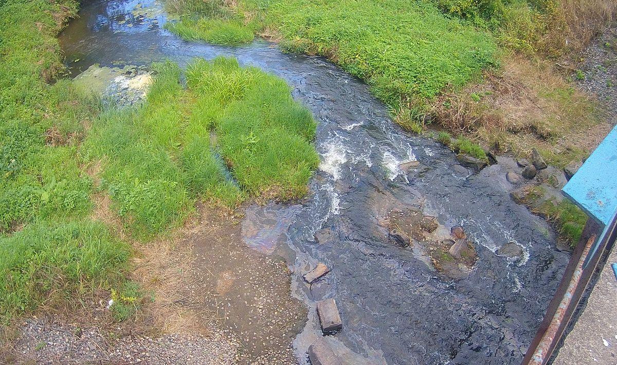 По факту загрязнения реки Великой проводится административное расследование