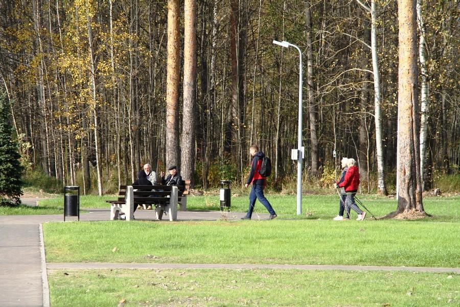 В парке на Волочаевской в Рыбинске общественники организовали дежурство