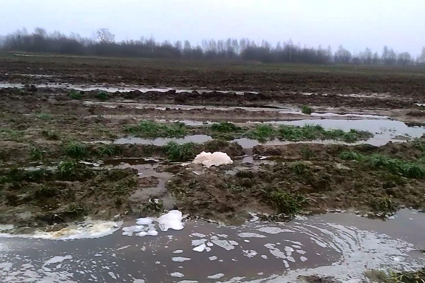 В Ярославской области оштрафовали предприятия, загрязнявшие почву пометом и навозом
