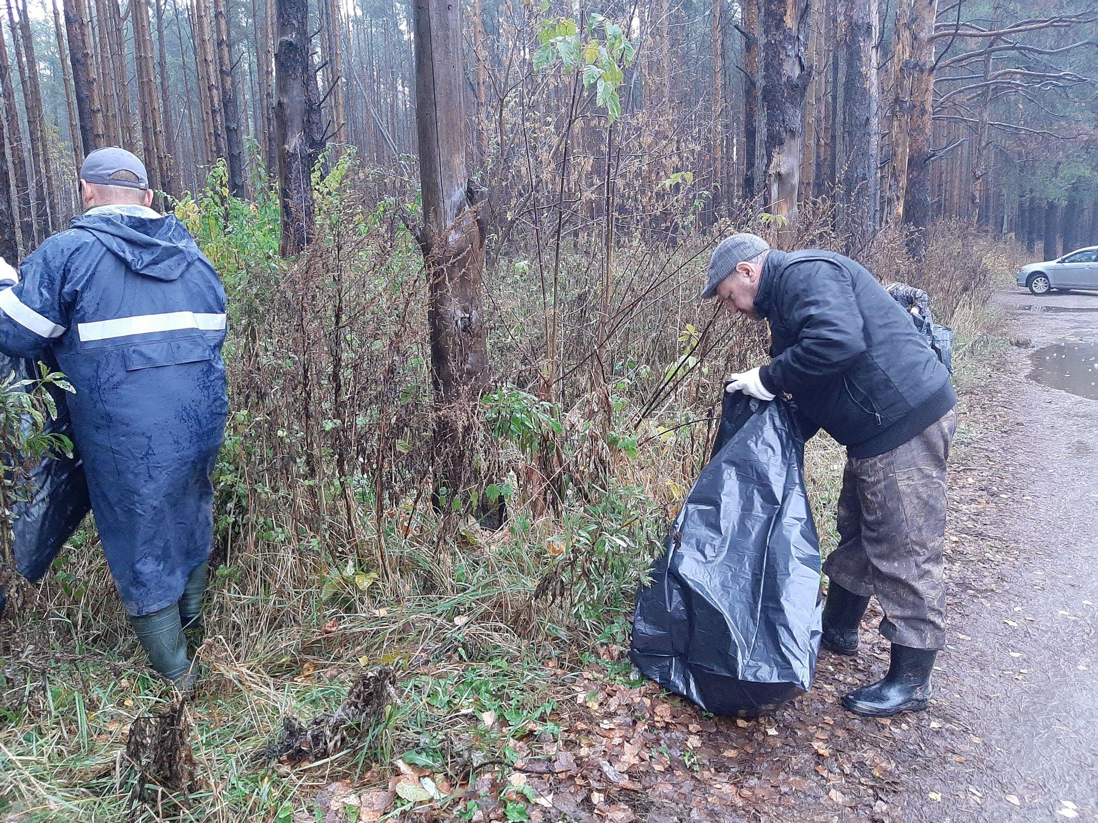 С начала года в лесах Ярославской области собрали порядка 870 кубометров мусора