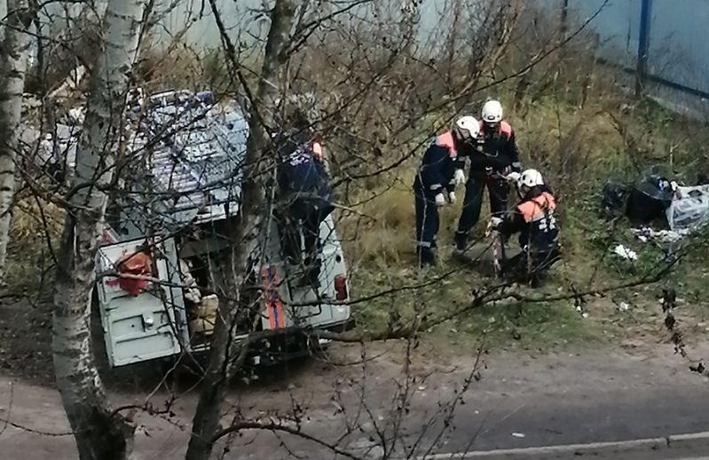 В Ярославле спасатели вытащили щенка, упавшего в открытый люк