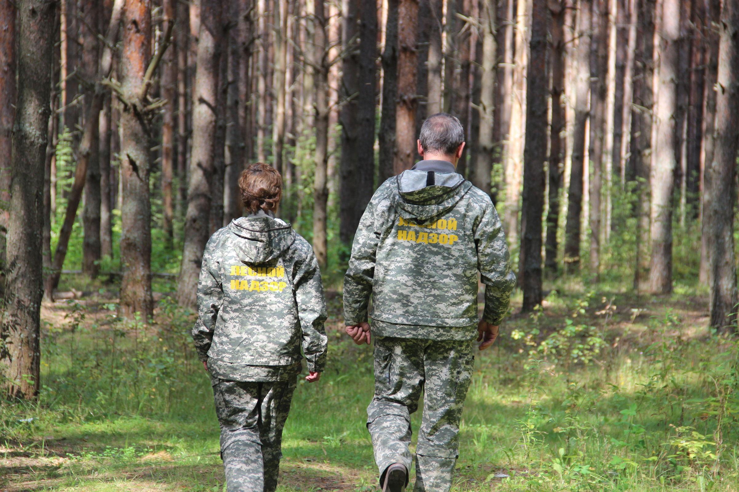 Нарушители лесного законодательства оштрафованы на 4,7 миллиона рублей
