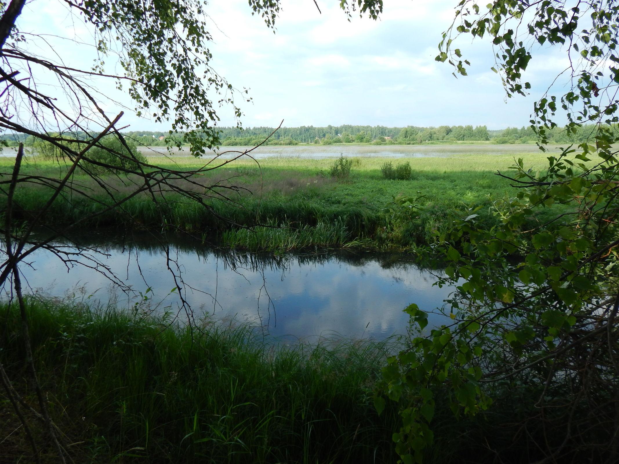 Нарушители режима использования особо охраняемых природных территорий оштрафованы на 1,3 миллиона рублей