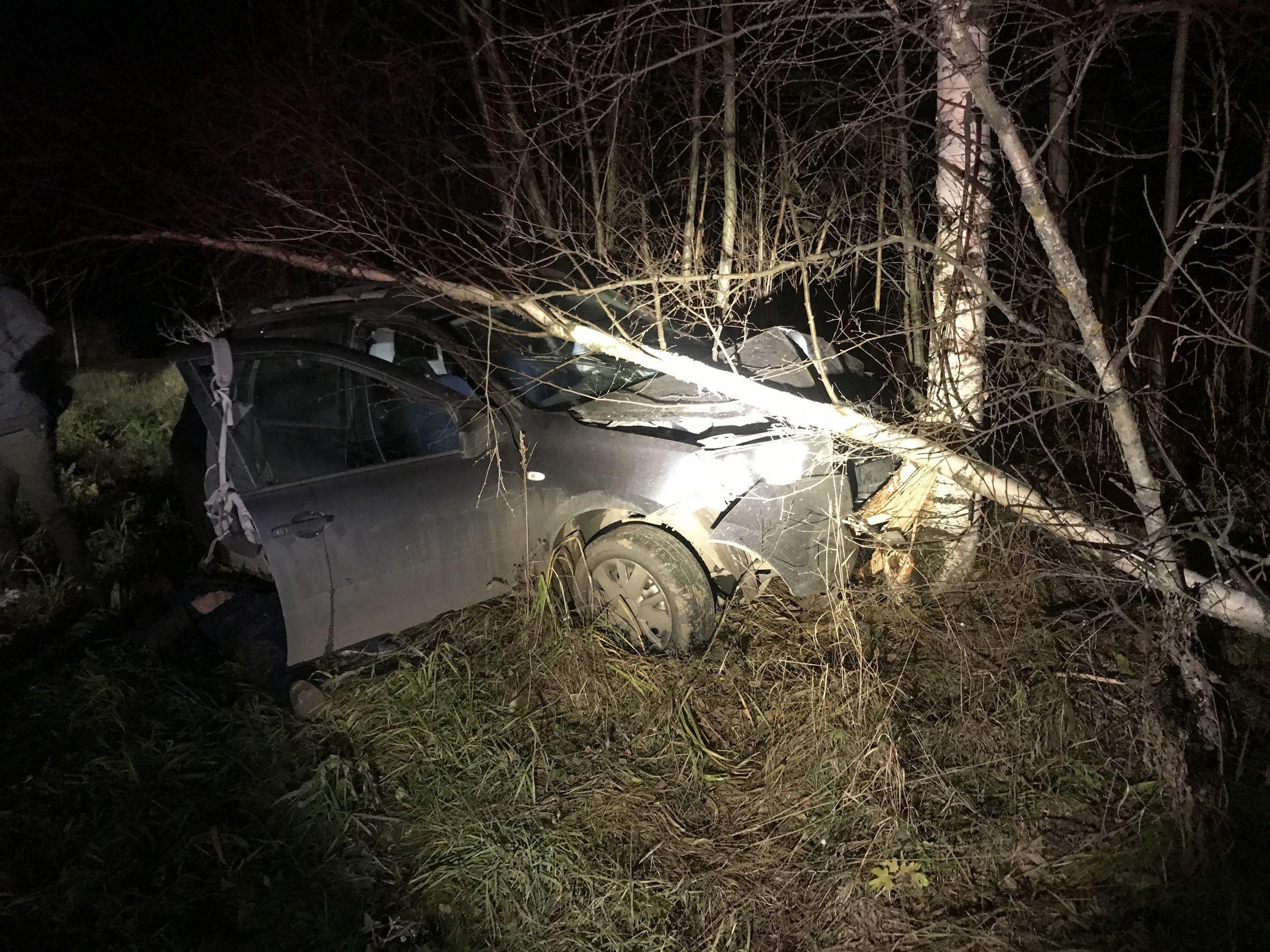 Под Ярославлем водитель «Лады» съехал в кювет и врезался в дерево