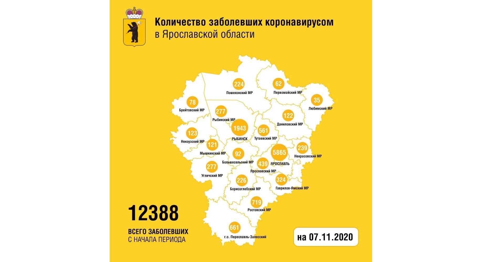 В Ярославской области от коронавируса вылечили еще 223 человек
