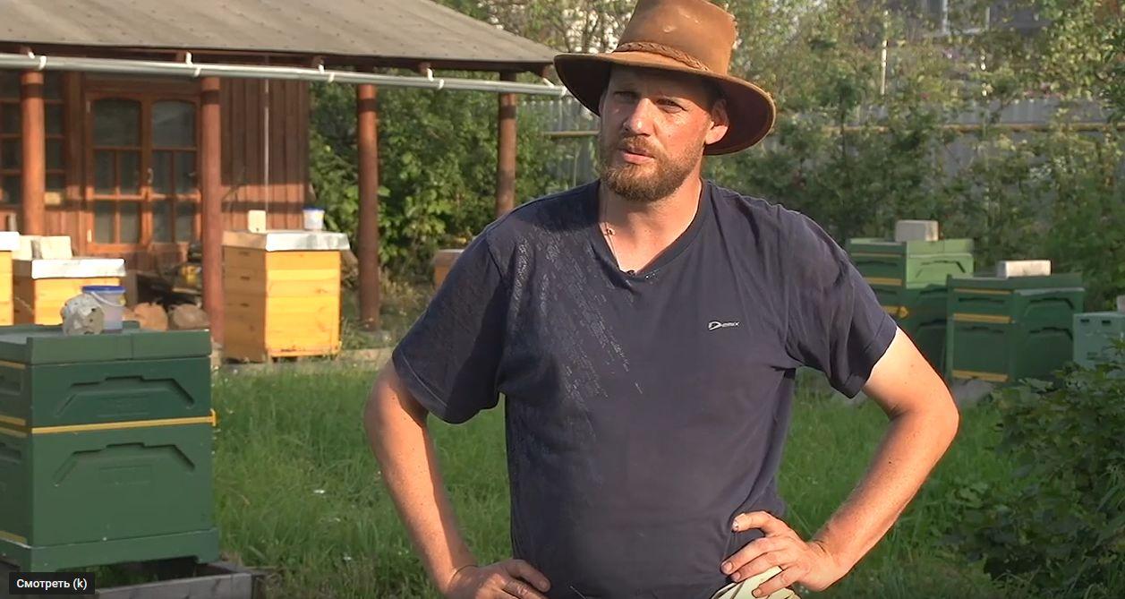 Рай для пчеловода. Житель Швейцарии приехал в Ярославскую область и остался здесь жить