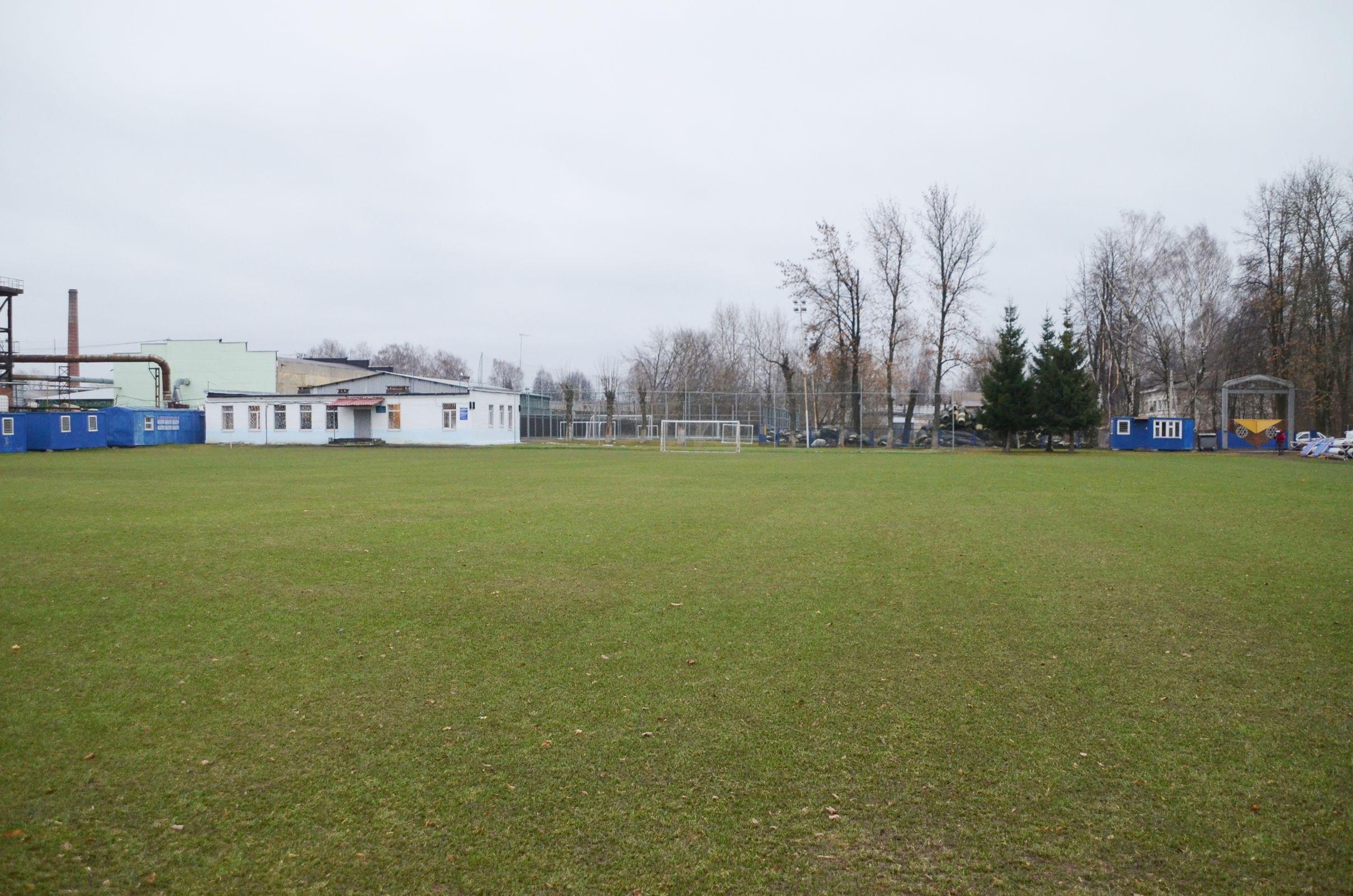 Три новых футбольных поля для воспитанников спортшкол весной обустроят в Ярославле и Рыбинске