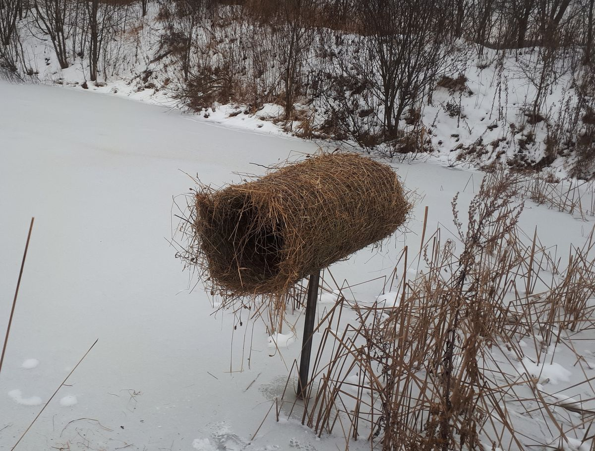 В Ярославской области изготовили полсотни искусственных гнездовий для уток