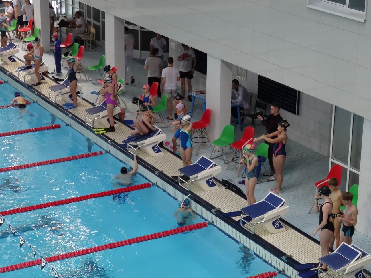 Пловцы невидимого фронта. Ярославская школа подводного спорта прославилась на весь мир