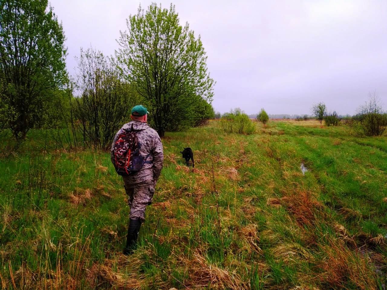 В Ярославской области изменились правила охоты