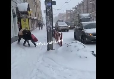 В Ярославле задержали неадекватного мужчину, который пытался задушить прохожую