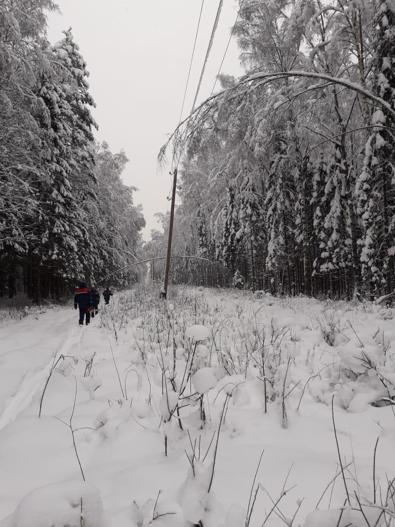 Жители Брейтовского района поблагодарили энергетиков за восстановление электроснабжения