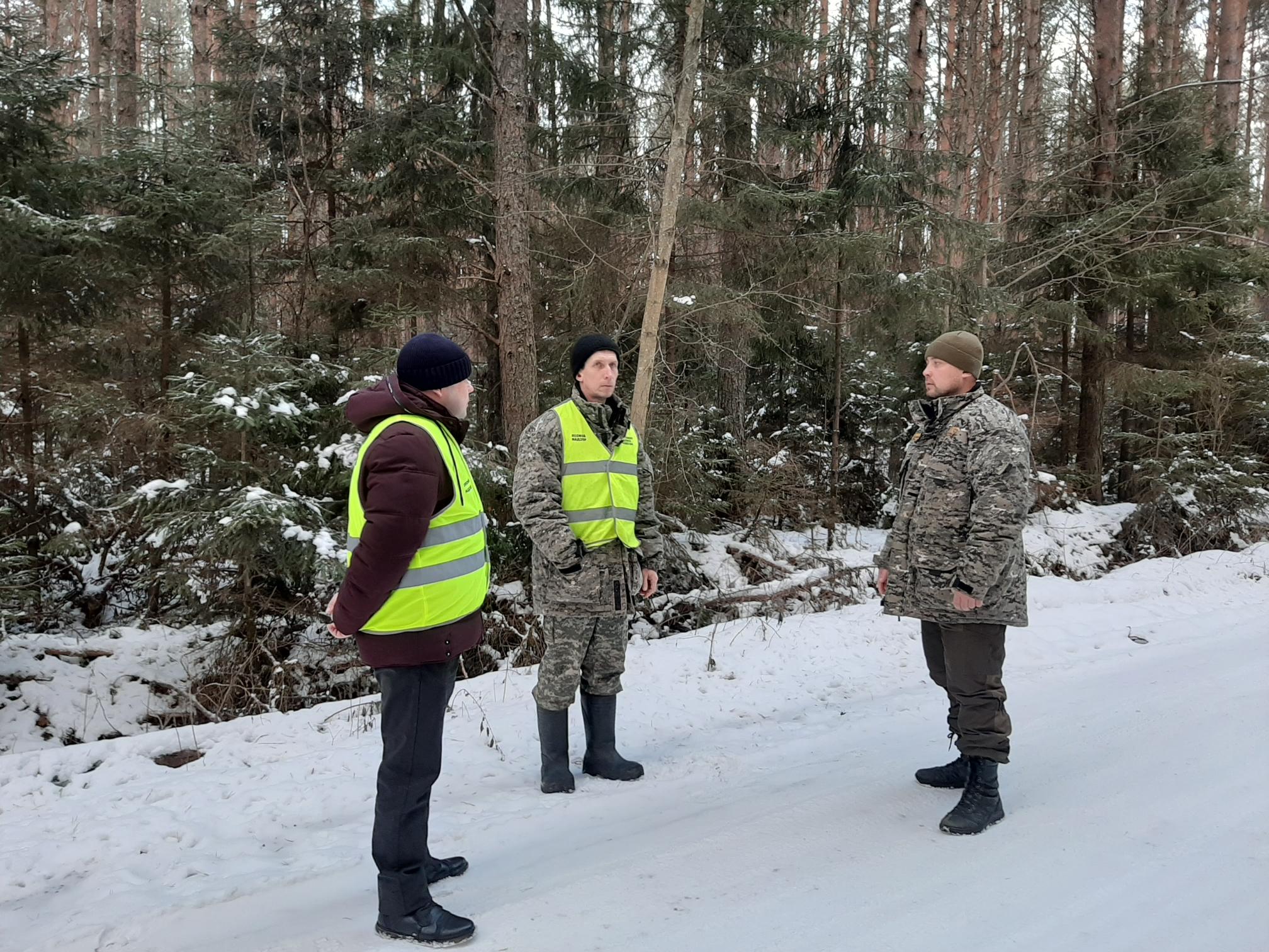 Нарушители лесного законодательства в прошлом году оштрафованы на сумму более 13 млн рублей
