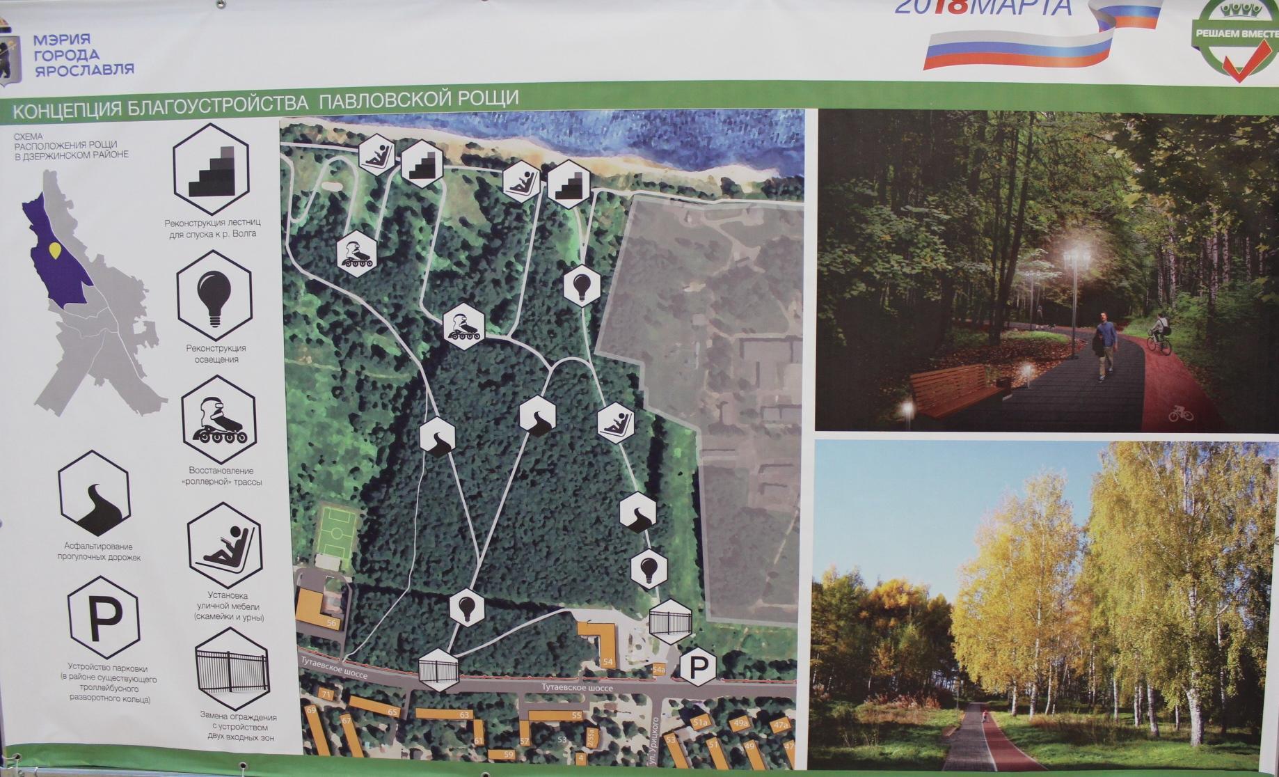 Ярославцы могут выбрать, как благоустроят Павловскую рощу и парк Судостроителей