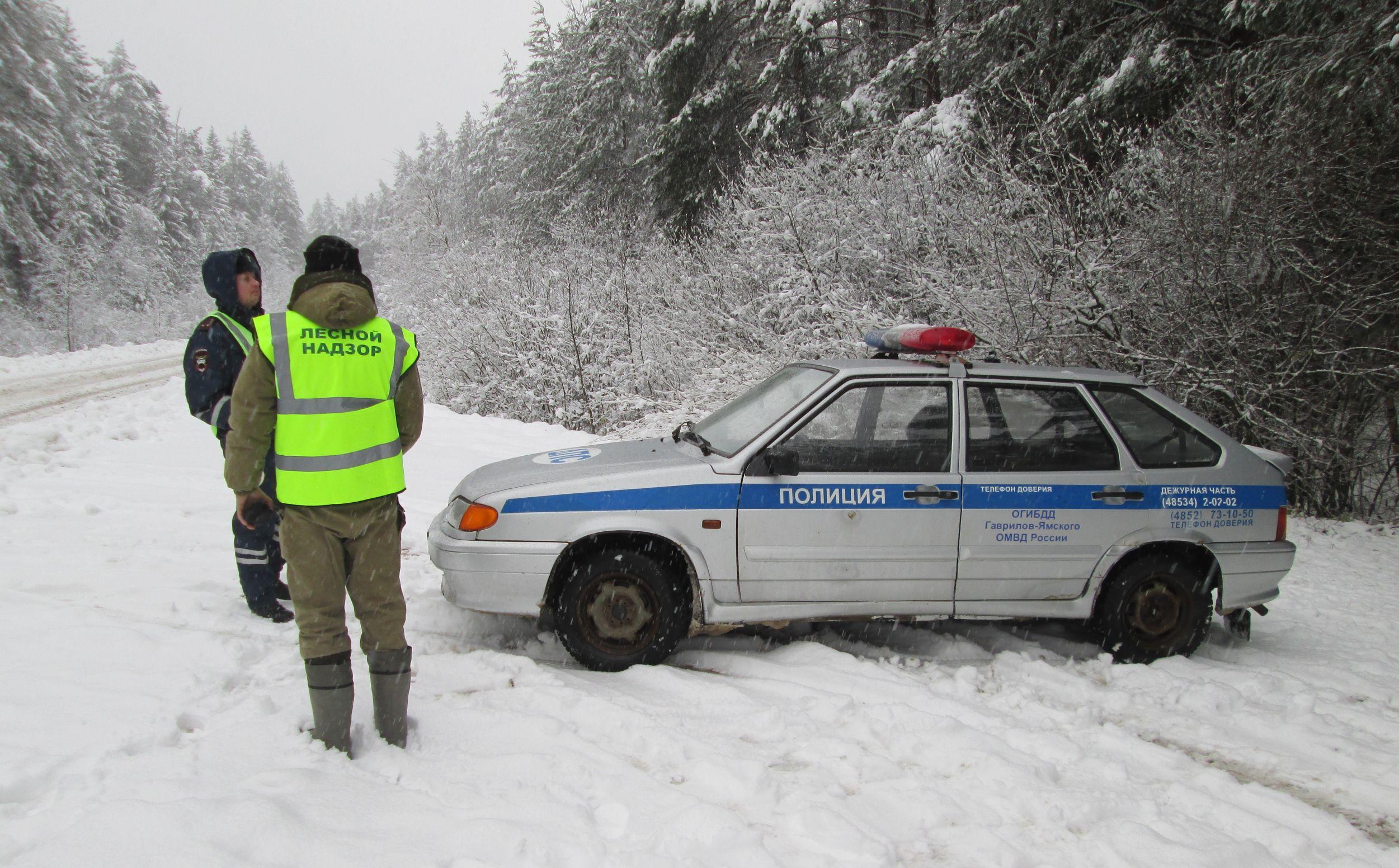 В Ярославской области с начала года провели более 50 рейдов по контролю за транспортировкой древесины