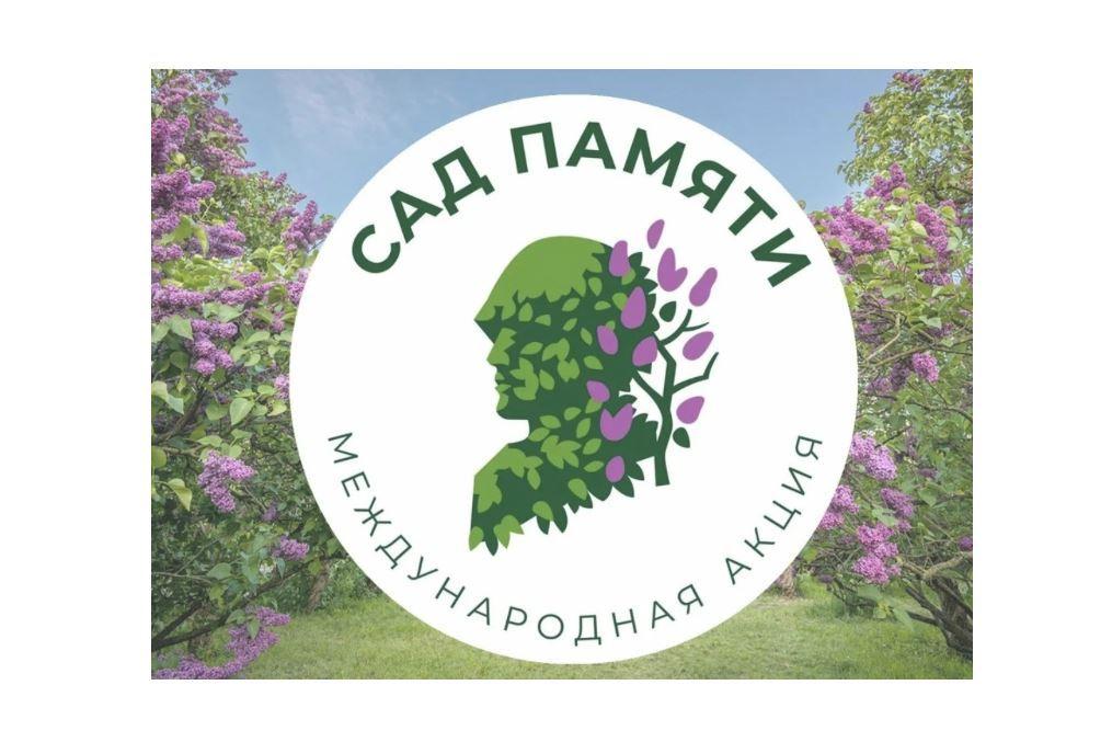 Более 220 тысяч елей высадят в регионе в рамках международной акции «Сад памяти»