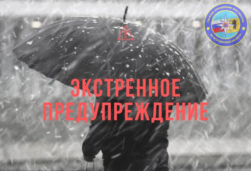 МЧС предупреждает о сильном дожде и ветре в Ярославской области