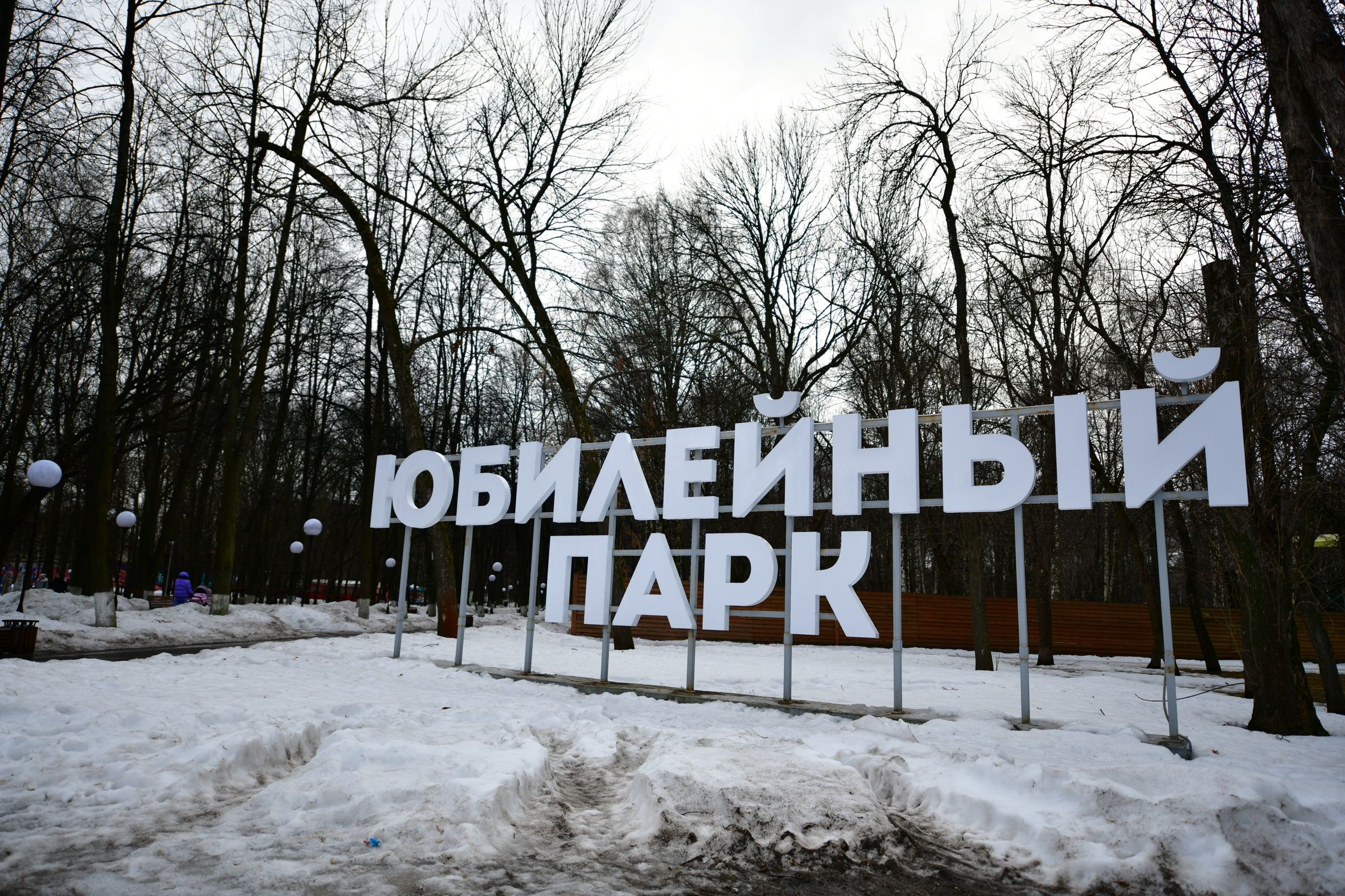 Мэр Ярославля поручил навести порядок в Юбилейном парке
