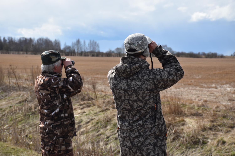 В Ярославской области открывается сезон охоты на пернатую дичь