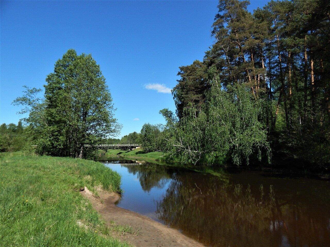 Жители Ярославской области могут принять участие в экоакции, посвященной Дню экологических знаний
