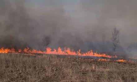 В Ярославской области спасатели за сутки 75 раз выезжали на тушение природных пожаров
