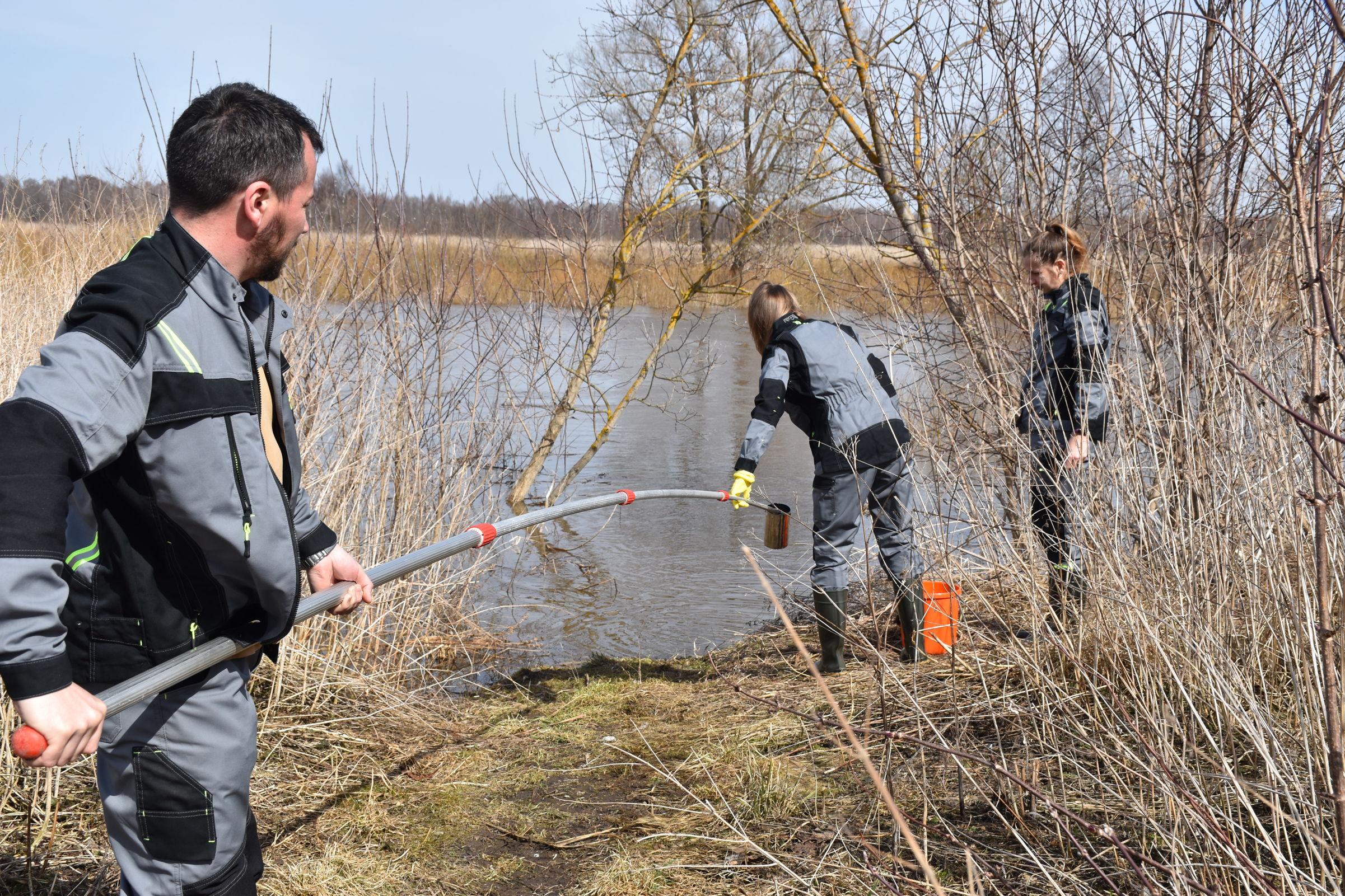 Реку Устье обследовали на наличие загрязнений