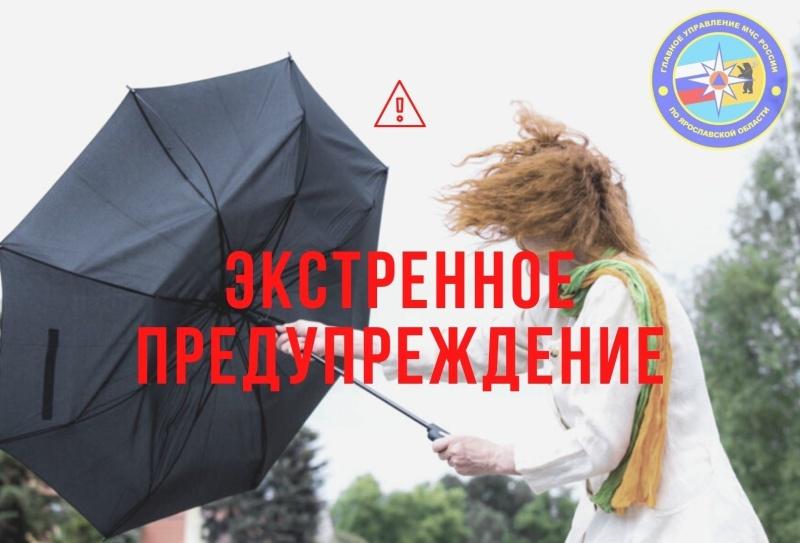 В Ярославской области МЧС обнародовало экстренное предупреждение в связи с ухудшением погоды
