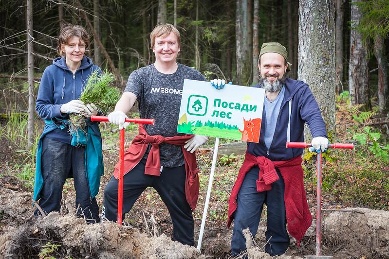 Жители Ярославской области могут принять участие в экоакции «Посади лес»