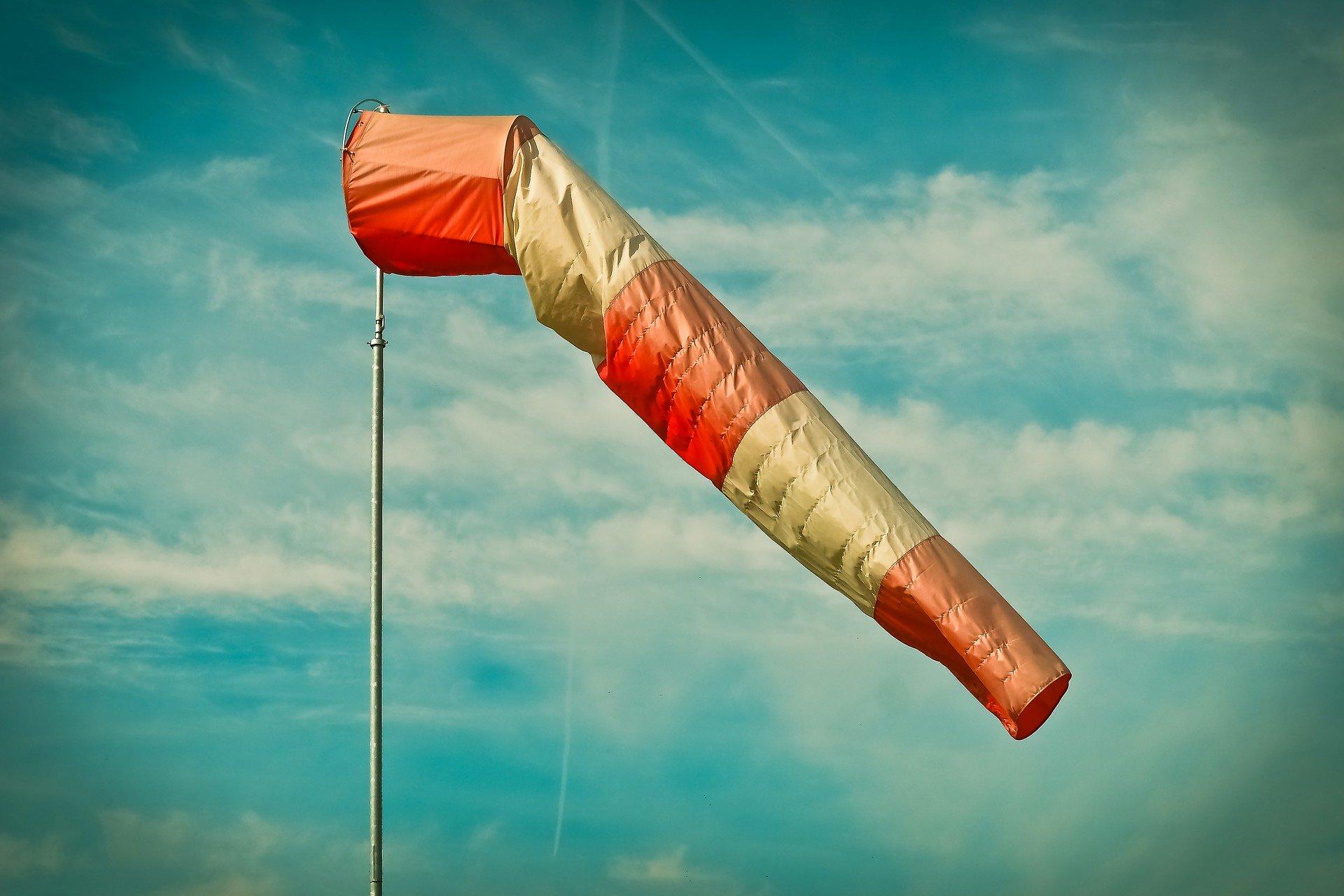 Экстренное предупреждение МЧС: в Ярославской области усиливается ветер