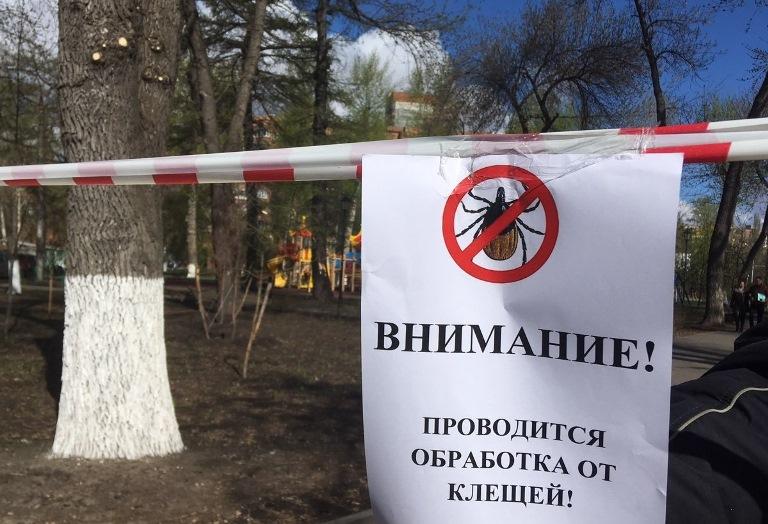 В Рыбинске зеленые зоны обрабатывают от клещей