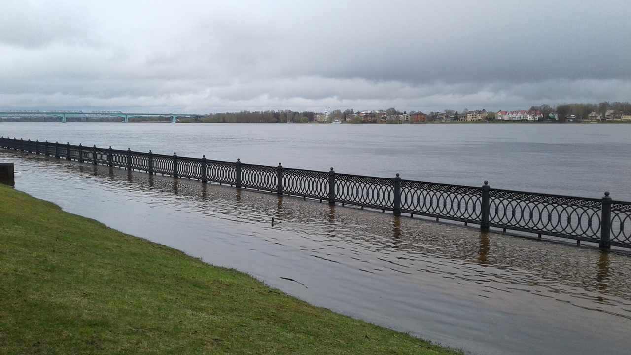 Росводресурсы назвали причину разлива Волги в Ярославской области