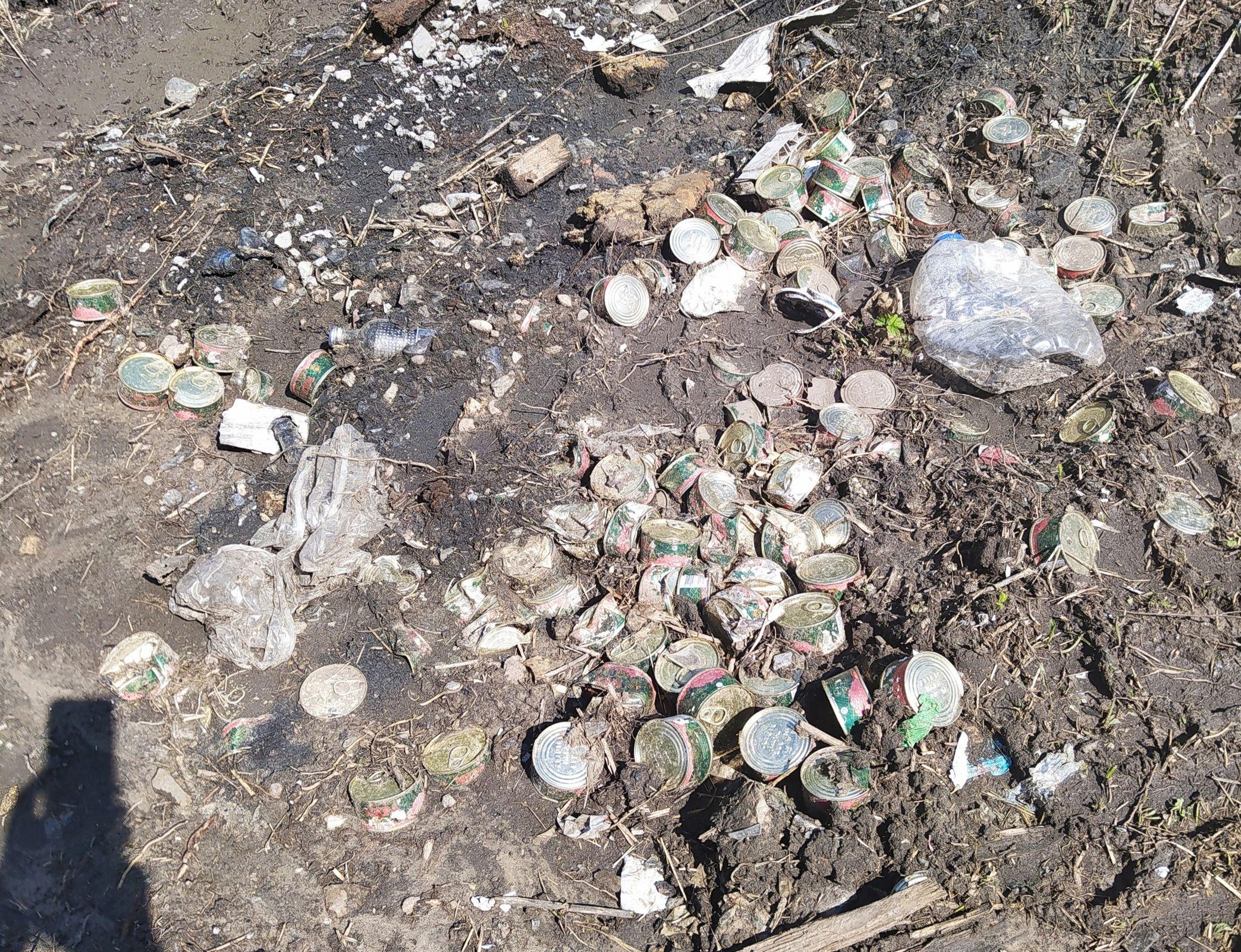 Под Ярославлем нашли кучу выброшенных банок с красной икрой