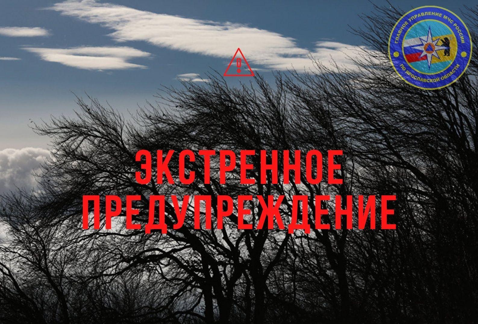 МЧС предупредило о второй погодной угрозе в Ярославской области на 19 мая