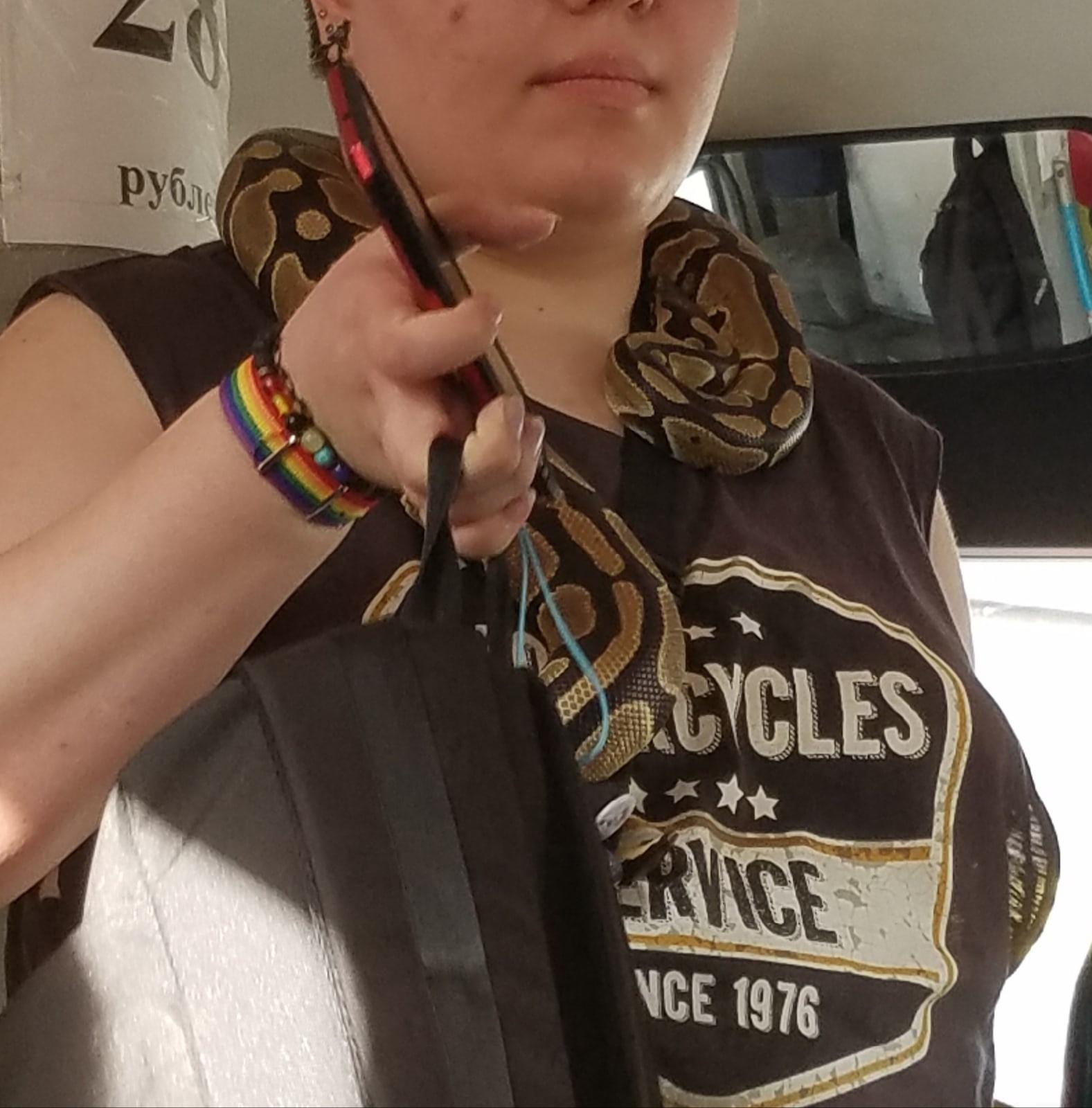 В Ярославле женщина со «змеиным шарфиком» напугала пассажиров маршрутки