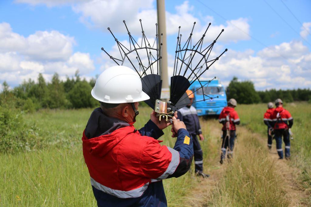 Птицезащитные устройства устанавливают на линиях электропередачи в Ярославской области