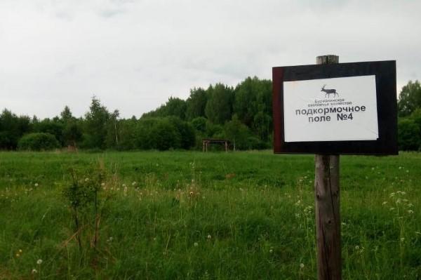 Ярославские охотники будут участвовать в мероприятиях по сохранению биоразнообразия