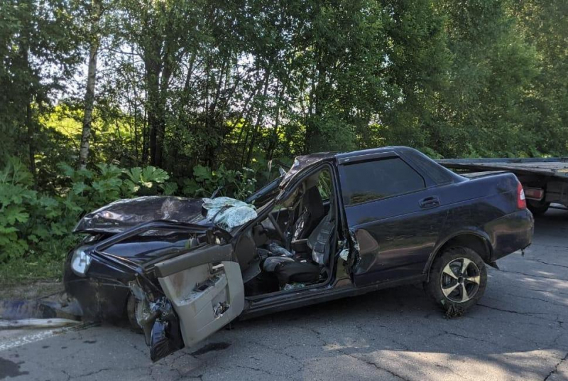 «Приора» сбила лося: в ДТП в Ярославской области погиб мужчина, двое пострадали