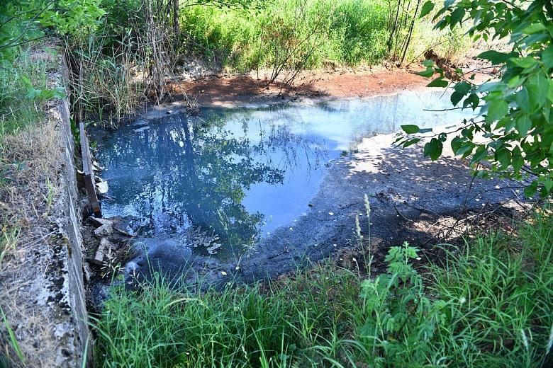 В Ярославле после обращений местных жителей выясняют причины загрязнения Пятовского ручья