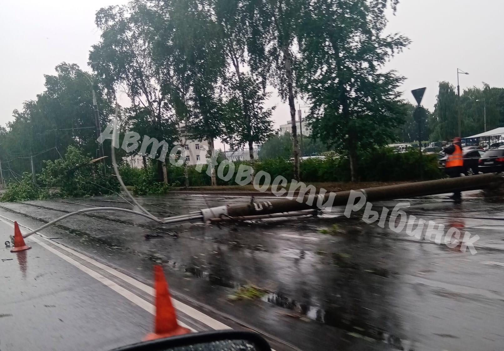 Сильный ветер в Рыбинске валил деревья и столбы