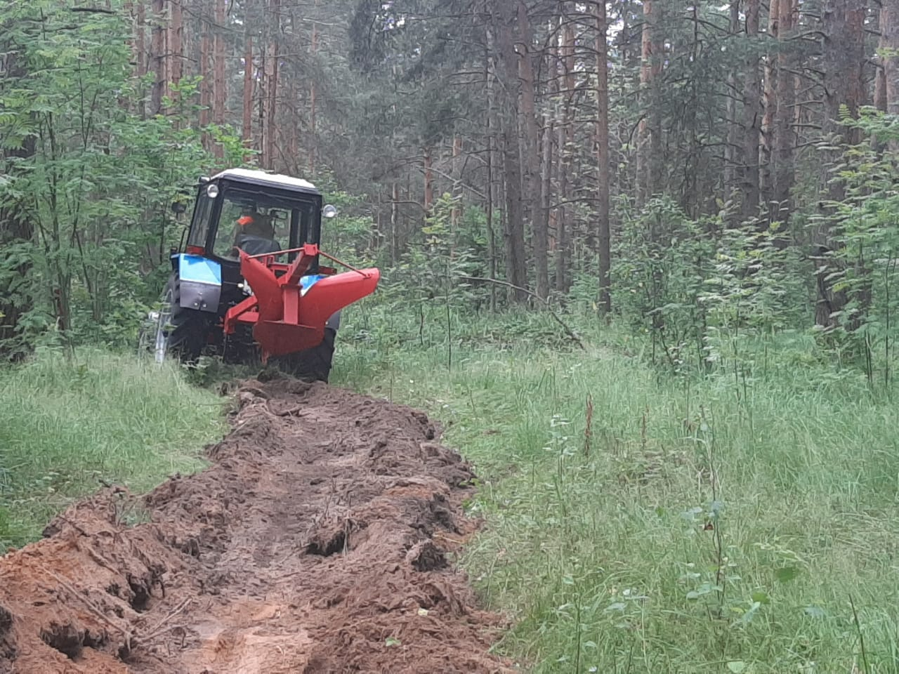 Более 400 километров минерализованных полос создали в регионе для защиты лесов от пожаров
