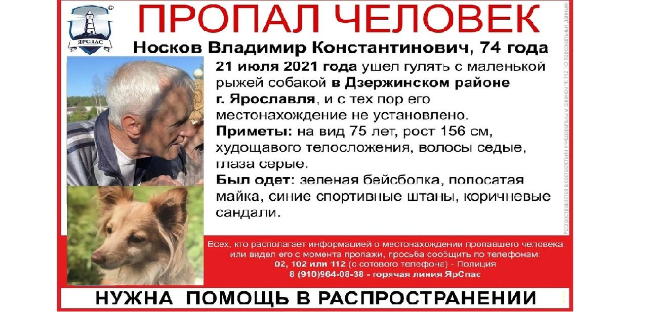В Ярославле ищут дедушку с рыжей собачкой