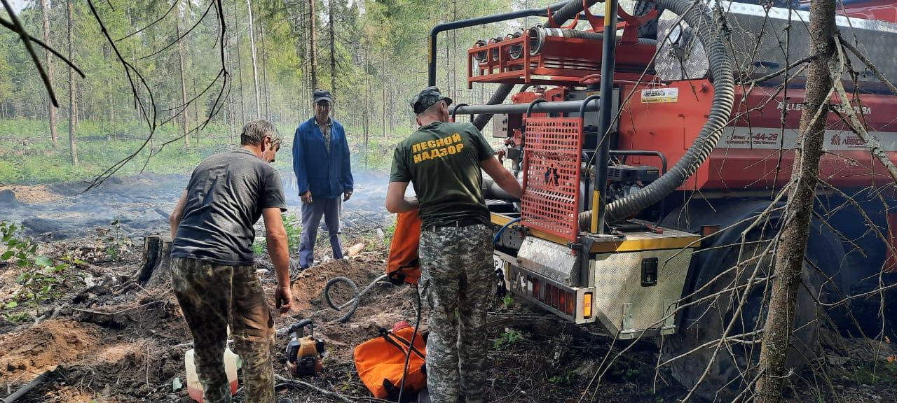 В Ярославской области ликвидируют лесной пожар
